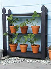 Strawberry plant stand