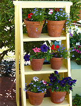 Pot ladder shelves