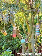 Upcycle containers and jars to make bird feeders for your garden