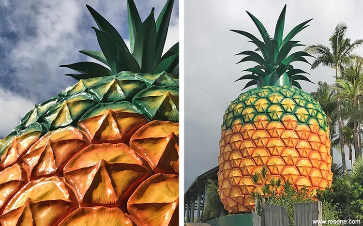 Pineapple detail completed