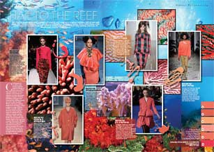 The warm, fresh pinks and oranges of a coral reef